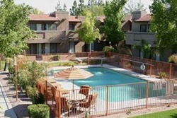 pet friendly scottsdale vacation rental
